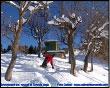Snowboard tra in roccoli di Torcola Vaga