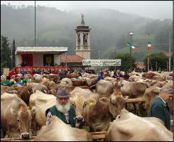 Fiera Serina 2005